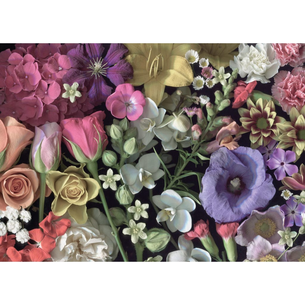Flowers is a challenging 1000 piece jigsaw puzzle for grown ups!