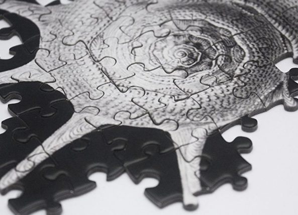Shells is a tricky monochrome puzzle